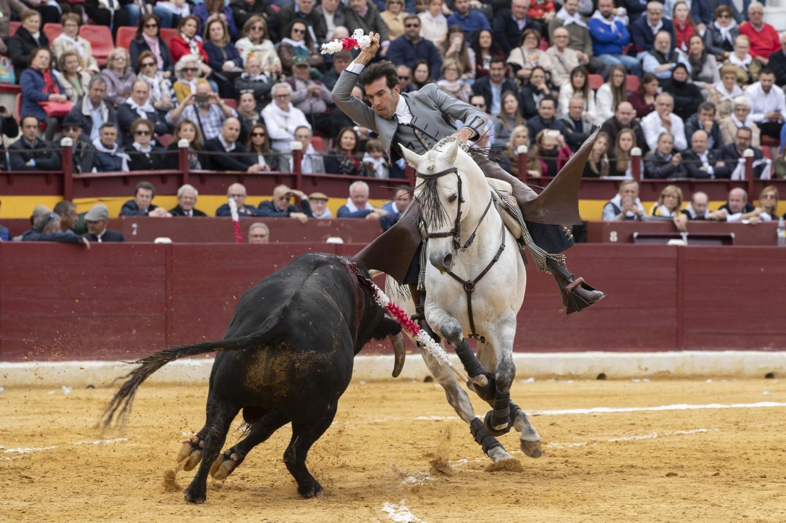 Festival Murcia, burladero TV
