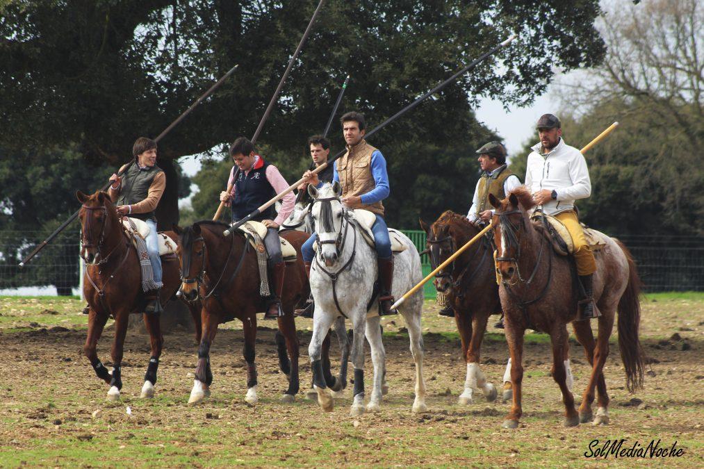 XVII Fiesta anual de la Peña Taurina de Sergio Galán