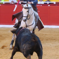 20190317_Embroque, Cieza, Banderillas OK 2